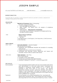 resume format accountant doc