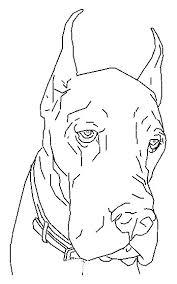 Kleurplaten En Zo Kleurplaat Van Hond