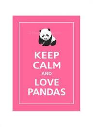 Quotes About Pandas Awesome Pandas R So Look Cute Pandas Pinterest Panda Calming And