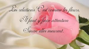 Citation Damour Drole Citation Du Coran