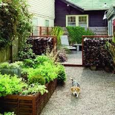 Debra Prinzing » Post » New Scenes Of My Lawnfree BackyardLawn Free Backyard