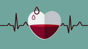 روش ساده تشخیص کم خونی در منزل - سالم زیبا