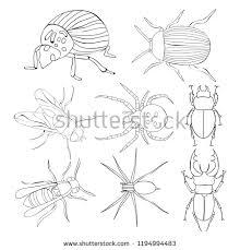 Kleurplaat Met Bee Vliegen Download Gratis Vectorkunst En Andere