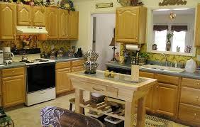 Diy Kitchen Cabinets Makeover Diy Kitchen Cabinet Makeover Enchanting Home Design