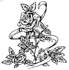 coloring pages of real roses 23