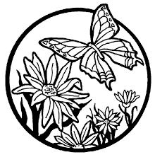 Small Picture butterfly coloring pages butterfly coloring pages butterflies