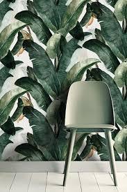 Jungle Behang Catchii
