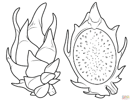 Jackfruit Coloring Pages Free Coloring For Kids 2019