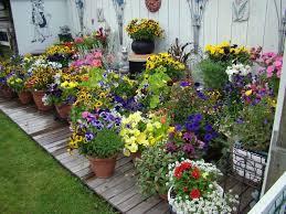 incredible outdoor planter ideas design garden flower pots alices