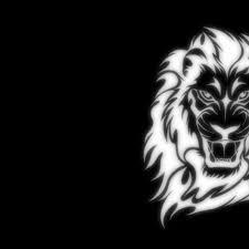 Lion Images Hd Art 2277448 Hd Wallpaper Backgrounds