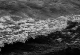 地震鱼为什么叫地震鱼地震鱼是怎么来的 天气网