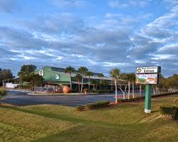sun harvest citrus opened in 1990 when sandy mckenzie nicely offering edsall groves delicious indian river citrus to the public