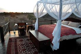 Unique Treehouse Accommodations In AfricaTreehouse Hotel Africa