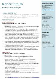 Credit Analyst Resume Delectable Loan Analyst Resume Samples QwikResume