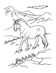 Breyer Horse Coloring Pages Fun Time