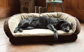 best big dog beds big dog furniture