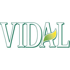 Shampoo Logo Design Vidal Shampoo Dyed And Colored Hair With Sunflower Extract 250ml