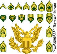 Us Navy Rank Insignia Art Print Barewalls Posters