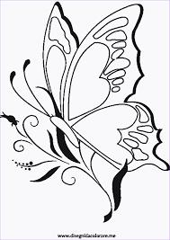 Disegni Da Colorareme 35 Ausmalbilder Schmetterling Kostenlos