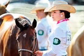 4 H Horse Program