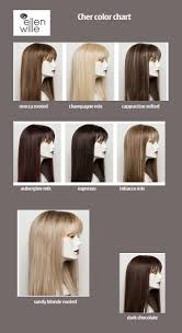 Colors For The Cher Hairpiece By Ellennwille Nowmavailable