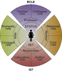 social interaction in everyday life figure 4 1 status set and role set