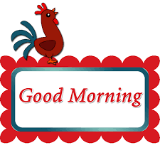 good morning with rooster free s