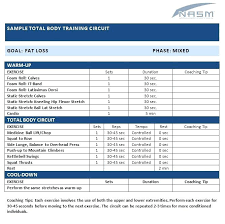 Personal Trainer Program Design Templates Training Program Template Workout Schedule Excel Plan Format