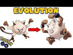 Image Result For Mankey Pokemon Evolution Chart Pokemon