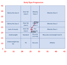 Personal Training Chart Dave Bray Chart Life Force Fitness