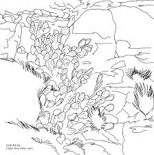 Small Picture Prickly Pear cactus and Rocks Southwestern Art Coloring Page