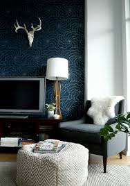 North Facing Living Room Colour Why Dark Walls Work In Small Spaces Designsponge
