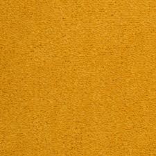 orange carpet texture. orange carpet texture r