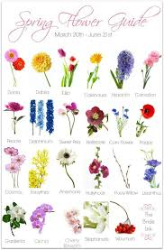 diffe types of flowers gorgeous diffe types of flowers dahlia name fine captures spring wedding flower