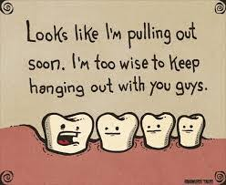 Image result for myth about dentistry