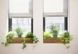 office planter boxes. office planter boxes i