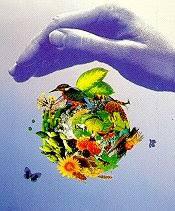 rozaini othman guru cemerlang biologi ozone layer depletion ozone layer depletion