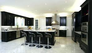 Small Kitchen Dark Cabinets Black Kitchen Cabinets Small Kitchen