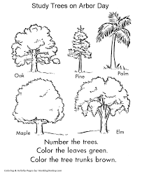 Arbor Day Coloring Pages Tree Identification Stuff For School