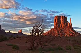 Image result for arizona