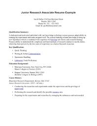 Resume Associate Degree Sales Associate Lewesmr