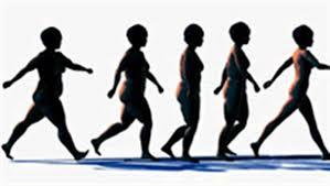 Image result for caminhada de obesa