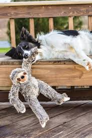 tico the sloth is an especially large plush toy mering 15 inches dogs love tugging and tossing this soft toy and cuddling up for a nap after playtime