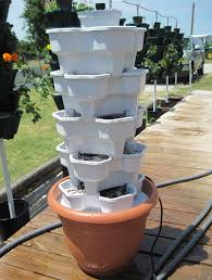 hydroponic garden tower. Perfect Hydroponic VertiStack Wonder Garden Hydroponic System On Tower O
