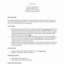 Plain Text Resume Template 8 Plain Text Resume Template Examples Resume Template