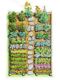 garden design vegetables and flowers
