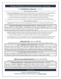 Executive Resume Writing Strategies   Resumes by Joyce   Sidemcicek com Executive Resume Technical Resume Writing Examples Samples