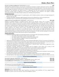 Download Federal Resume Samples Haadyaooverbayresort Com Military