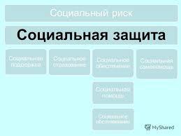 Презентация на тему Социальная политика РФ и государственная  8 Социальный риск Социальная защита
