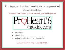 Proheart 6 Dosing Chart Proheart 6 Is A Convenient Injection That Protects Your Dog